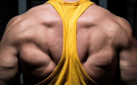 Adding Muscle At Any Age: